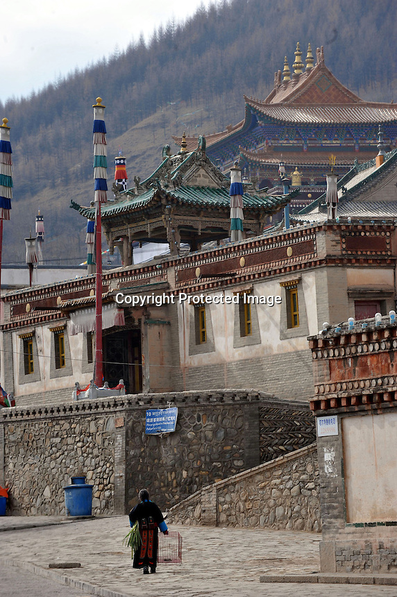 Kunbum Temple near Xining, Qinghai Province 13 November 2008. Qinghai Province in western China borders Tibet and parts were the scenes of disturbance earlier this year, 2008...Photo by Richard Jones