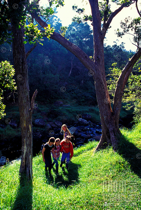 Group of four girls walking near stream at Kokee National Park on Kauai