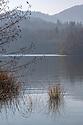 'Upper Lakes', Plitvice Lakes National Park, Croatia. November.