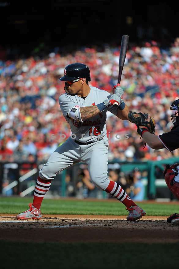 WASHINGTON DC - April 12, 2017: Kolten Wong #16 of the St. Louis Cardinals during a game against the Washington Nationals on April 12 2017 at Nationals Park in Washington DC. The Cardinals beat the Nationals 6-1.-(Chris Bernacchi/SportPics)