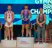 17th March 2019, M&S Arena, Liverpool, England; Gymnastics British Championships day 4;  Men's Artistic Masters Vault Final medallists L to R REGINI-MORAN Giarnni, Europa Gym Club, JARMAN Jake, Huntingdon Olympic Gymnastics Club, KARNEJENKO Pavel, Notts Gymnastics Academy
