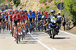 The peloton led by Team Sunweb on Puerto de Alcublas 2nd Cat climb during Stage 5 of La Vuelta 2019 running 170.7km from L'Eliana to Observatorio Astrofisico de Javalambre, Spain. 28th August 2019.<br /> Picture: Ann Clarke | Cyclefile<br /> <br /> All photos usage must carry mandatory copyright credit (© Cyclefile | Ann Clarke)
