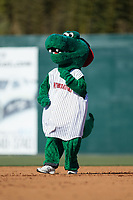 Kannapolis Intimidators mascot Tim E. Gator runs the bases between innings of the game against the Lakewood BlueClaws at Kannapolis Intimidators Stadium on April 9, 2017 in Kannapolis, North Carolina.  The BlueClaws defeated the Intimidators 7-1.  (Brian Westerholt/Four Seam Images)