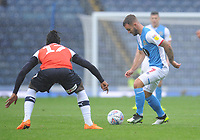 Blackburn Rovers' Adam Armstrong under pressure from Luton Town's Pelly Ruddock<br /> <br /> Photographer Kevin Barnes/CameraSport<br /> <br /> The EFL Sky Bet Championship - Blackburn Rovers v Luton Town - Saturday 28th September 2019 - Ewood Park - Blackburn<br /> <br /> World Copyright © 2019 CameraSport. All rights reserved. 43 Linden Ave. Countesthorpe. Leicester. England. LE8 5PG - Tel: +44 (0) 116 277 4147 - admin@camerasport.com - www.camerasport.com