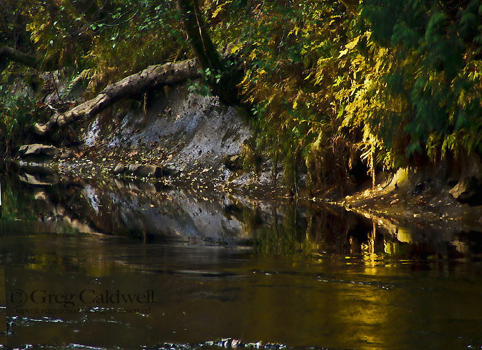 Dark water slips past a richly colored steep bank.