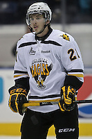 LHJMQ - Cape Breton Screaming Eagles 2012-2013