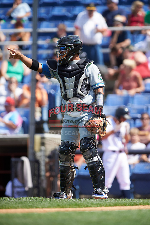 Hartford Yard Goats catcher Jan Vazquez (6) during a game against the Binghamton Rumble Ponies on July 9, 2017 at NYSEG Stadium in Binghamton, New York.  Hartford defeated Binghamton 7-3.  (Mike Janes/Four Seam Images)