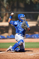 Los Angeles Dodgers Gersel Pitre (75) during an Instructional League game against the Cleveland Indians on October 10, 2016 at the Camelback Ranch Complex in Glendale, Arizona.  (Mike Janes/Four Seam Images)