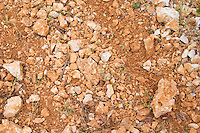 Domaine d'Aupilhac. Montpeyroux. Languedoc. Terroir soil. France. Europe. Vineyard. Soil with stones rocks.