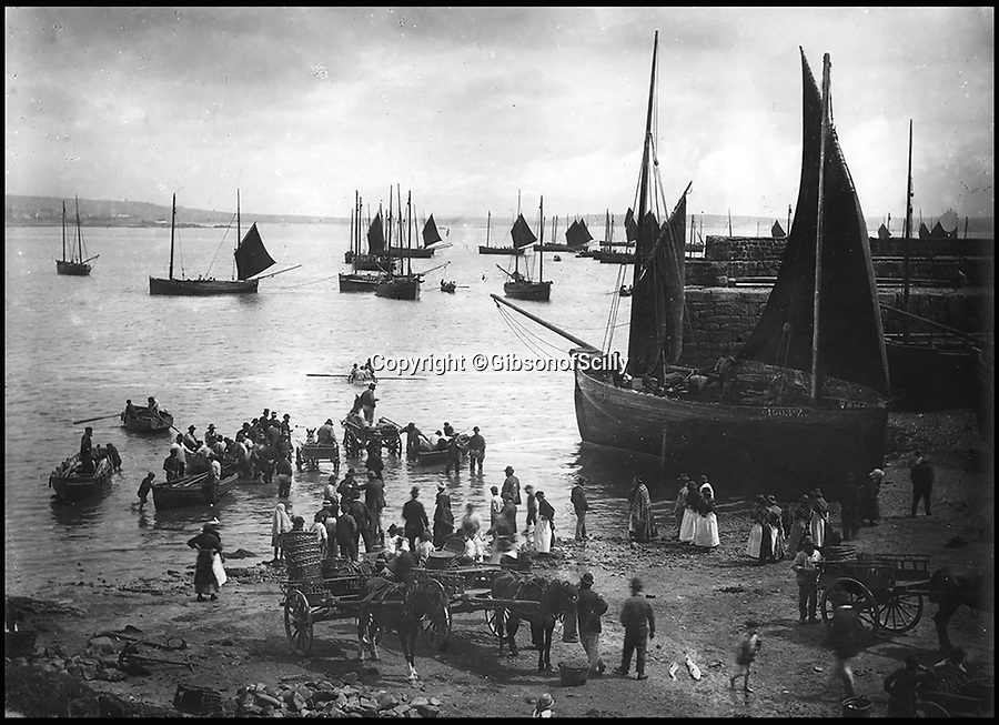 BNPS.co.uk (01202 558833)<br /> Pic: GibsonOfScilly/BNPS<br /> <br /> Newlyn on the south coast of Cornwall around 1900.<br /> <br /> An archive of eye-opening photographs documenting the grim reality of Poldark's Cornwall has emerged for sale for &pound;25,000.<br /> <br /> More than 1,500 black and white images show the gritty lives lived by poverty-stricken families in late 19th and early 20th century Cornwall - around the same time that Winston Graham's famous Poldark novels were set.<br /> <br /> The collection reveals the lowly beginnings of towns like Rock, Fowey, Newquay and St Ives long before they became picture-postcard tourist hotspots.<br /> <br /> Images show young filth-covered children playing barefoot in squalid streets, impoverished families standing around outside the local tax office, and weather-beaten fishwives tending to the day's catch.<br /> <br /> The Cornish archive, comprising 1,200 original photographic prints and 300 glass negative plates, is tipped to fetch &pound;25,000 when it goes under the hammer as one lot at Penzance Auction House.