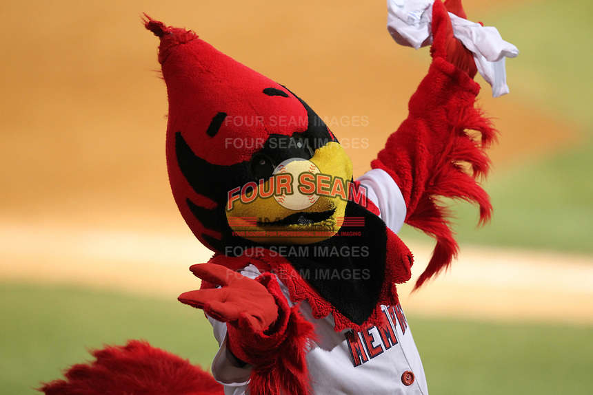 Memphis Redbirds Rockey Redbird during a game versus the Round Rock Express at Autozone Park on April 28, 2011 in Memphis, Tennessee.  Memphis defeated Round Rock by the score of 6-5 in ten innings.  Photo By Mike Janes/Four Seam Images