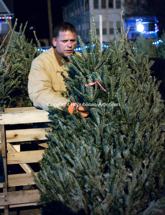 Waterbury, CT- 30 November 2015-113015CM03- Joe Franqui of Waterbury looks at Christmas trees at Saints Peter and Paul School in Waterbury on Monday.   Bart Cammarasana, co-president of the fundraiser said ten Christmas trees were stolen from the school.      Christopher Massa Republican-American