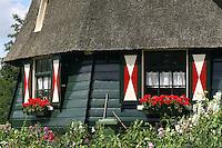 De Rieker Molen in Amsterdam