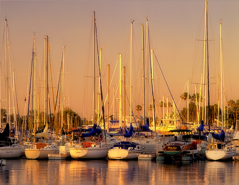 F00070M.tif   Sailboats in harbor in Coronado, California