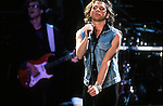 Various live photographs of the rock band, INXS.