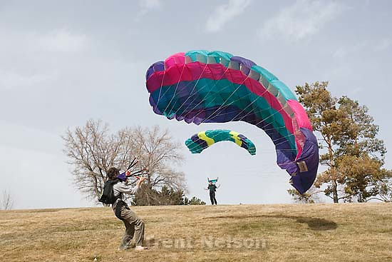 Salt Lake City - Matt (pink parachute) and Mike Haberstock unpacked their parachutes in Sugar House Park Tuesday March 3, 2009 to play with the stiff wind blowing through the Salt Lake Valley.