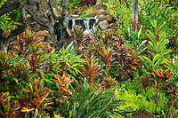 Garden with waterfalls at Four Seasons. Lanai, Hawaii.