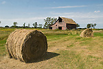 Weathered red wooden barn with hay rolls, North Dakota