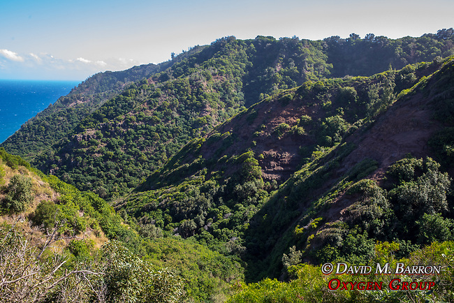 Molokai Hills