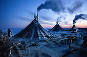 """A colony of tents, or """"chums"""", belonging to Nenets herders stand in the Arctic tundra in the Russian Nenets Autonomous Region. The are the original people living in the Russian Arctic, before being crushed by Soviet collectivisation and affected by modern oil and gas exploration."""