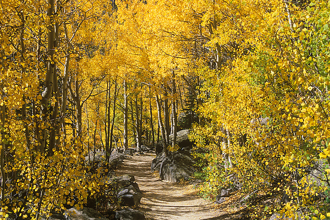 Trail to Flattop Mountain, Rocky Mountain National Park, Colorado