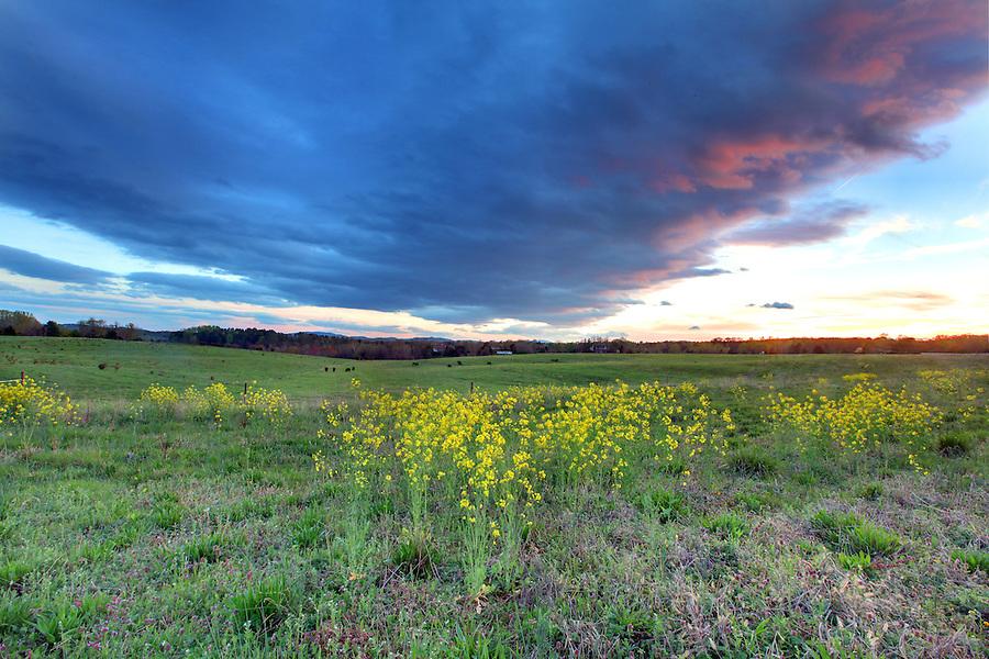 Dark clouds in the sky over field.