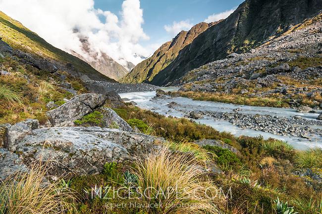 Butler River near Ice Lake, Westland National Park, West Coast, New Zealand
