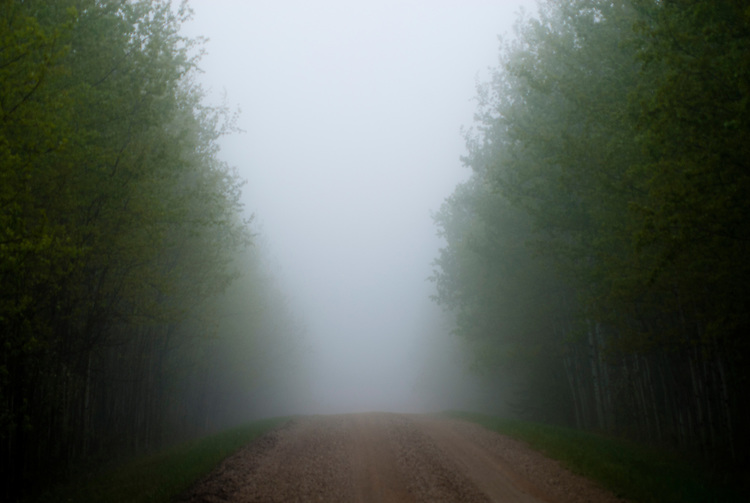 Road in the fog, Riding Mountain, Manitoba, Canada. Misty moody feel in the parkland.