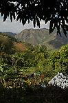 The beautiful setting of our hosts' home atop Cuba's Sierra Maestra mountains, featuring 6,000 foot peaks in Torquino National Park.