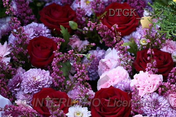 Gisela, FLOWERS, photos(DTGK312,#F#) Blumen, flores, retrato