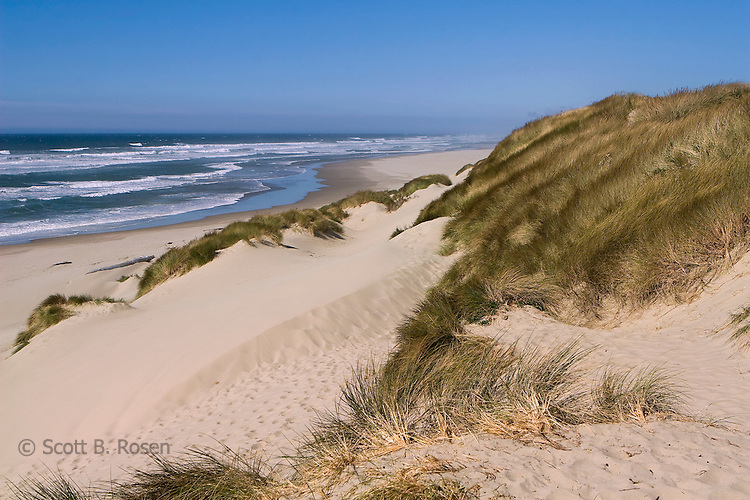 Oregon Dunes National Recreation Area, Florence, Oregon