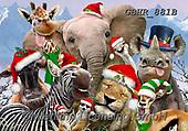 Howard, SELFIES, paintings+++++,GBHR881B,#Selfies#, Christmas,#xa# ,elephants