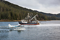 Small bush plane on floats coordinates with fishing vessel in Salisbury Sound, north of Sitka during the Sitka sac roe herring fishery.
