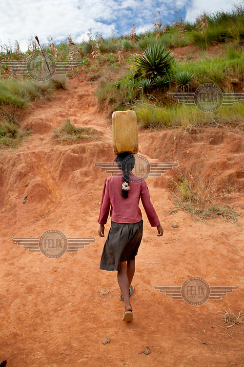 18 year old Rose Razanajaona struggles with a heavy jerry can on one of her many journeys to collect water. She says: 'There is a difference between girls and boys at my age, men are stronger than me as a girl, but I have to fetch the water. Girls always collect the water...It will always be that way. I wake up at 4am. I collect water six times a day, three times in the morning and three times in the afternoon, it takes two hours. I have to do so, when I have my grandmother waiting for me. So I need to hurry. I really feel pain on my head when I carry the Jerry can. I lift first from the ground, then I put it on my shoulder, and then I put it on my head. I had a surgery for appendicitis and sometimes I still feel pain. You may see my walking strangely, with a limp. I make some stops and I take a half jerry can, so I have to go more often and it takes more time. I go down the slope and I get to the water point. The road is very bad quality. It's steep and it's very slippery when the rain comes. It's very dangerous and I am afraid, because I stumble and I have bruises, I hurt myself. I fall two times a week. Many times I collect water in the dark. I take any water I can find there, as there is no other option. We have to go anyways, we know the road is in such bad condition, and I am afraid sometimes, when I have to go on my own. I am afraid of animals, like snakes.The water is very dirty and has a strange taste, sandy. The muddy water from the top falls into the water source. I have had diahorrea five times in the last two months and it takes me a week to get healed. I have suffered twice from dysentery last year; it takes me four or five days to heal. My tummy hurts and I bleed.'