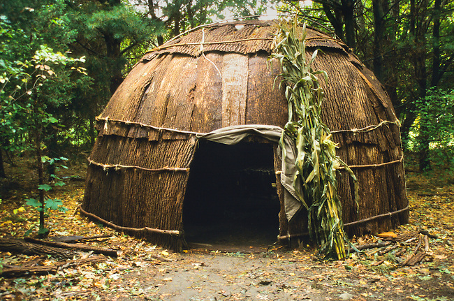 The Algonquin Indians lived in bark covered dwellings called wigwams. Their houses were either built in both a cone or dome shape.
