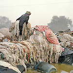 an outdoor makshift laundry for hotels along the Yamuna river, feb 2014