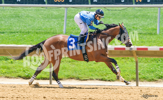 La Key winning at Delaware Park on 6/8/16