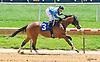 La Key winning at Delaware Park on 6/8/16
