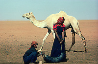 Young touareg nomad  carrying water in the desert