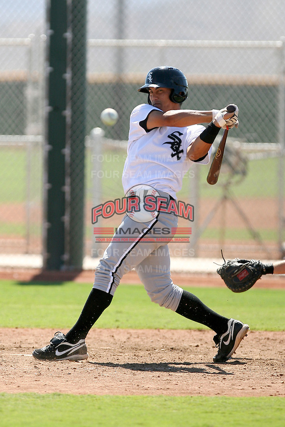 Tyler Saladino - Chicago White Sox - 2010 Instructional League.Photo by:  Bill Mitchell/Four Seam Images..