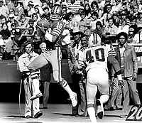 San Francisco 49ers Gene Washington grabs pass against the Tampa Bay Bucs. (1977 photo/Ron Riesterer)