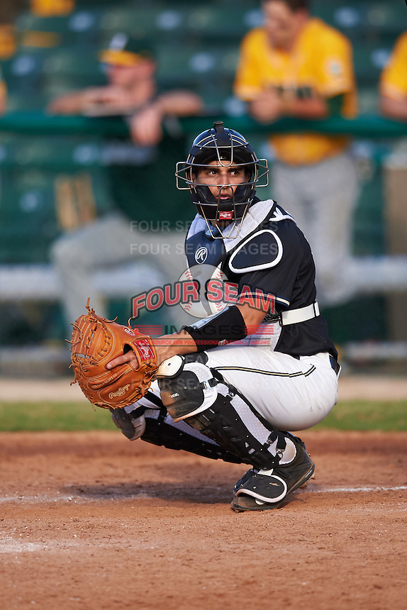 Pittsburgh Panthers catcher Manny Pazos (43) looks to the dugout during a game against the Siena Saints on February 24, 2017 at Historic Dodgertown in Vero Beach, Florida.  Pittsburgh defeated Siena 8-2.  (Mike Janes/Four Seam Images)