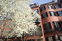 Pinckney Street, Beacon Hill, Boston, MA