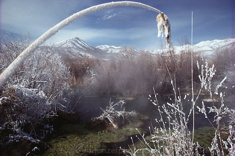 Weather: One of numerous ninety-degree-plus hot-water springs in the Midway area of Utah. Snow. Nature Spring. (1981)