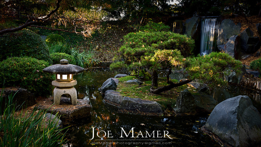 Koi pond, lantern and waterfall at the Minnesota Landscape Arboretum Japanese garden.
