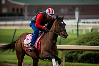 LOUISVILLE, KY - MAY 02: Wonder Gadot gallops in preparation for the Kentucky Oaks at Churchill Downs on May 2, 2018 in Louisville, Kentucky. (Photo by Alex Evers/Eclipse Sportswire/Getty Images)
