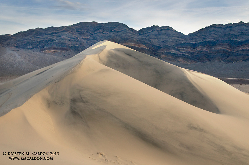 At 750 ft, Sand Mountain is the tallest dune in California and part of the Eureka Dune field. Moisture found in the sand here creates a very unique ecosystem for many endemic species.