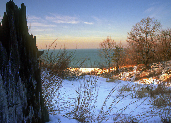 The Furnaceville Blowout is frames by the stump of a tree that died when it was partiually buried beneath the ever moving sands of the dunes at the south end of Lake Michigan in Indiana Dunes National Lakeshore in Porter County, Indiana