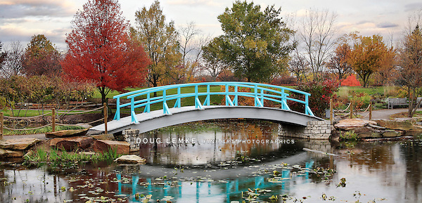A Pastoral Scene Of A Japanese Foot Bridge Over A Quiet Little Pond On A Rainy Day In Autumn, Southwestern Ohio, USA