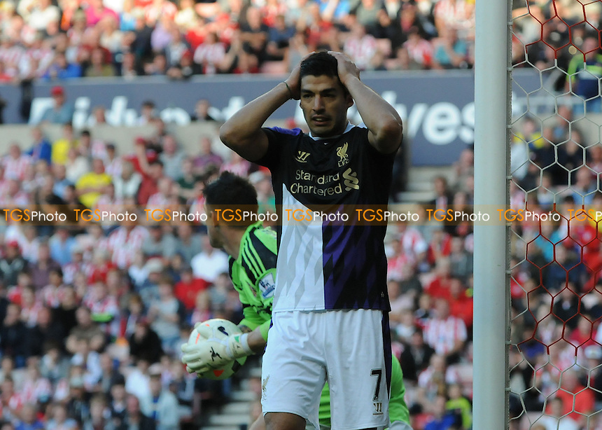 Luis Su&aacute;rez of Liverpool is left frustrated  - Sunderland vs Liverpool - Barclays Premier League Football at the Stadium of Light, Sunderland - 29/09/13 - MANDATORY CREDIT: Steven White/TGSPHOTO - Self billing applies where appropriate - 0845 094 6026 - contact@tgsphoto.co.uk - NO UNPAID USE<br />   i